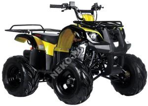 Квадроцикл IRBIS ATV 125U