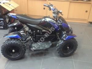 Квадроцикл E001 MOTOLAND