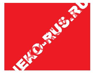 Бесплатная доставка лодочных моторов в Екатеринбурге