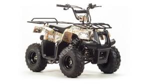 Квадроцикл MotoLand RIDER 110