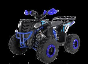 Квадроцикл WELS Thunder EVO 125