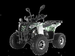 Квадроцикл WELS Thunder EVO X 125