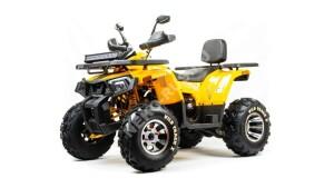 Квадроцикл Motoland 200 WILD TRACK X PRO (2020 г.)